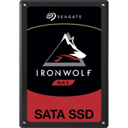 SEAGATE IRONWOLF 110 SSD- 2.5
