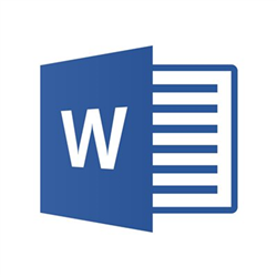 MICROSOFT WORDMAC 2019 OLP 1LICENSE NOLEVEL