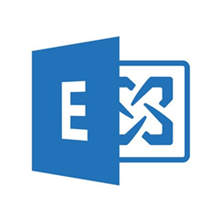 MICROSOFT EXCHANGEENTERPRISECAL 2019 OLP 1LICENSE NOLEVEL USRCAL WITHOUTSERVICES
